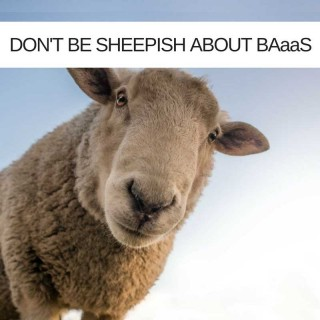 Why IT Projects Shouldn't Be Sheepish About BAaaS
