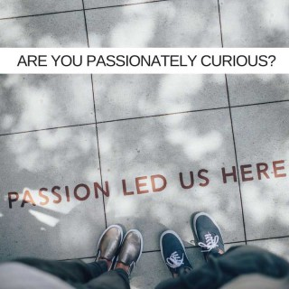 Are-You-Passionately-Curious_
