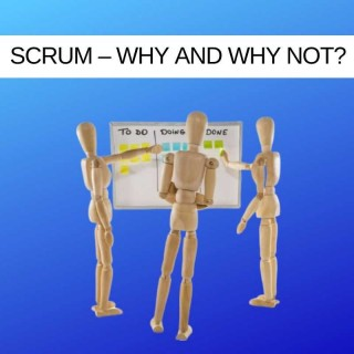 Which IT Project Methodology? Scrum – Why and Why Not?