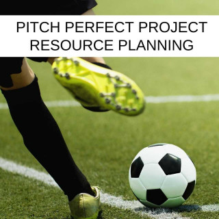 Pitch Perfect IT Project Resource Planning. You and Stoneseed UNITED To Deliver Your Business Goals