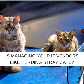 How much of your ITSD energy is spent herding cats, sorry, managing vendors?